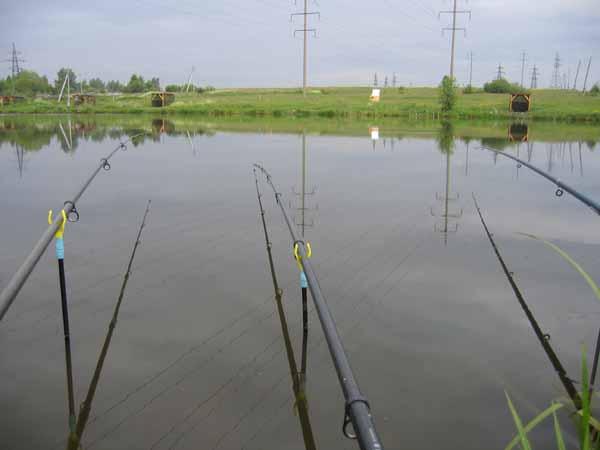 создание пруда для рыбалки